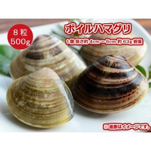 冷凍 生食可能 ボイル 殻付き はまぐり 500g 8粒入 1個約4〜6cm前後 蛤 BBQ バーベキュー 網焼き 業務用 貝 fuji-s