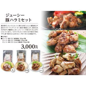 ジューシー豚ハラミセット 塩胡椒味 150g×3袋 九州味噌味 150g×3袋 にんにく醤油味 150g×3袋|fuji-s