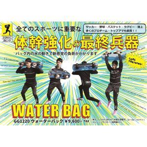 ガビック ウォーターバック GAViC WATER BAG GC1220 fuji-spo-big5