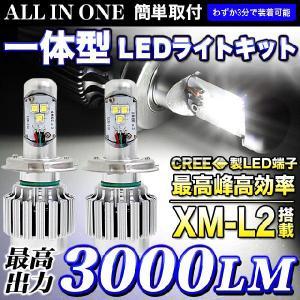 LEDライト オールインワン一体型 3000LM 最高出力 1年保証|fujicorporation2013