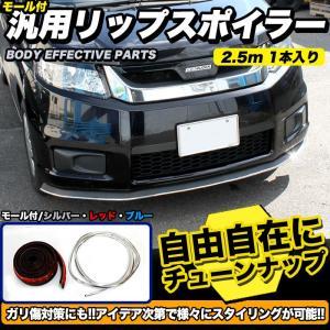 汎用リップスポイラー モール付き フェンダーアーチモール 2.5m メッキ レッド ブルー fujicorporation2013