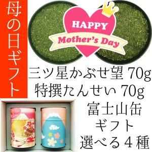 母の日ギフト 2021特撰新茶 静岡茶の富士山セット 三ツ星熟成かぶせ茶望70g 特撰やぶきた茶たん...