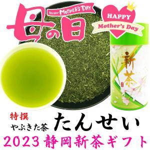 母の日ギフト 2021静岡新茶 特撰やぶきた茶 たんせい 200g プレミアムブレンド 贈答品 お茶...
