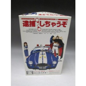 フジミ模型 1/24 ストライクカー ストライク男・佐賀沙織 P.C.V.製塗装済みフィギュア付|fujikyouzai