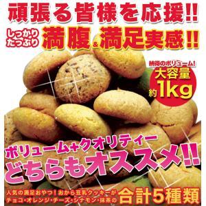 新感覚満腹おから豆乳ソフトクッキー1kg/ダイエットスイーツ|fujilata