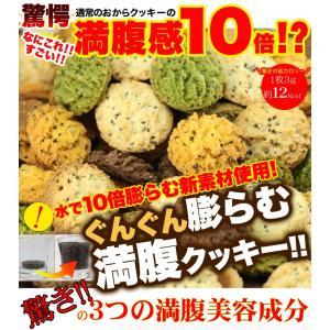 満腹!チアシード入り豆乳おからクッキー4種どっさり500g ...