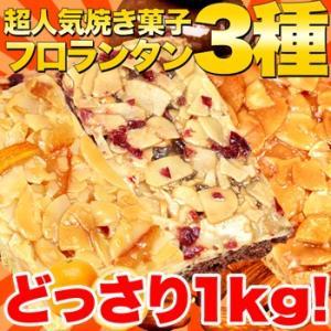 訳あり 新フロランタン3種どっさり1kg/スイーツ|fujilata