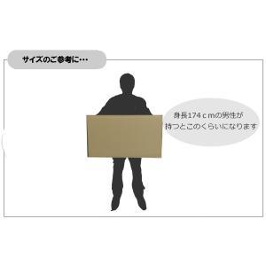 海外用引越しダンボール02(国際小包B対応)1枚|fujimokunetshop|02