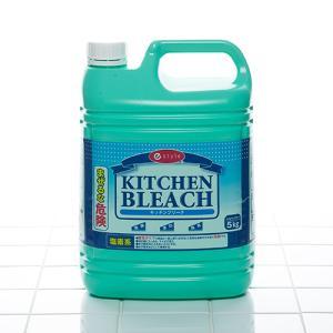 キッチン用 除菌漂白剤 e-style キッチンブリーチ5kg×3本【業務用】 fujinamisquare