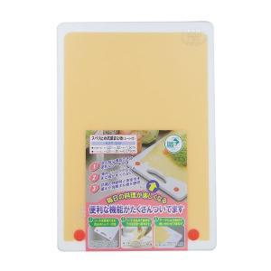 三洋化成KST-SW スベリ止抗菌まな板 シート付 W|fujino-netshop