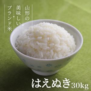 はえぬき 30kg 送料無料 お米 コメ 山形県産 令和2年産 精米 玄米 無洗米の画像