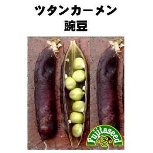 野菜 タネ 種 ツタンカーメン豌豆 藤田種子|fujitaseed