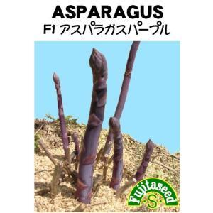 野菜 タネ 種 F1 アスパラガスパープル 藤田種子|fujitaseed