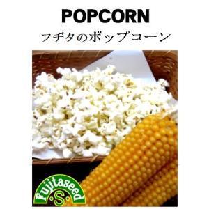 野菜 タネ 種 フヂタのポップコーン 藤田種子|fujitaseed
