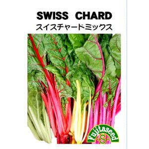 野菜 タネ 種 スイスチャード ミックス(白・赤・黄・ピンク) 藤田種子|fujitaseed