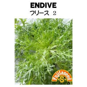 野菜 タネ 種 エンダイブ・フリース2 藤田種子|fujitaseed