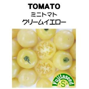 野菜 タネ 種 ミニトマト クリームイエロー 藤田種子|fujitaseed