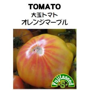 野菜 タネ 種 大玉トマト オレンジマーブル 藤田種子|fujitaseed