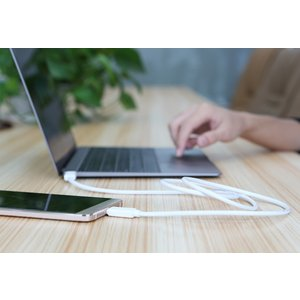 Rock Type-C to Type-C USBケーブル USB3.0 最大3A 高速データ転送 高速充電|fujitvlab-selection|02