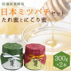 国産はちみつ 日本みつばちの蜂蜜セット たれ蜜とにごり蜜 2...