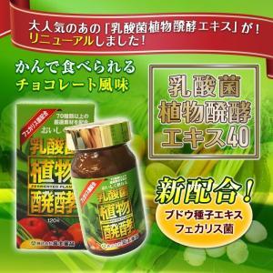 乳酸菌植物醗酵エキス40 120粒入り fujiyaku