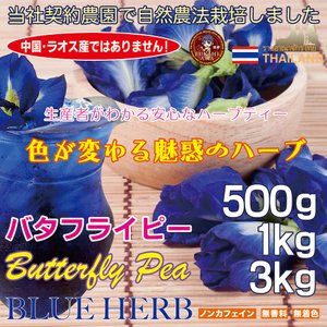個人の方でも大特価卸価格!高品質バタフライピー乾燥花弁タイプ/1kg [安心・安全な自社契約農園産]|fukahiasia