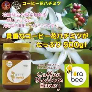 コーヒーの花から採取した100%ピュア蜂蜜! タイ・チェンマイ産(内容量たっぷり500g)|fukahiasia