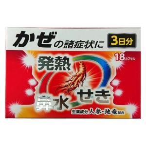 プロピンゴールドカプセルA(12カプセル)【指定第2類医薬品】