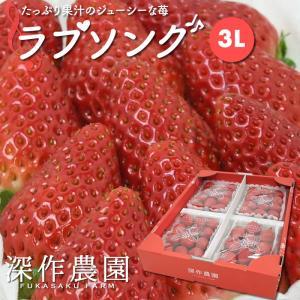 いちご イチゴ 苺 果物 ギフト 旬 フルーツ ラブソング プレミアムパック 3Lサイズ×4パック