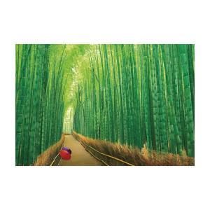 ジグソーパズル 1000ピース 風景 嵯峨野の竹林 51-229|fuki-fashion