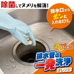 排水管の一発洗浄 オレンジタイプ 台所 水まわり 排水口 排水管 ぬめり 詰まり 大掃除|fuku-kitaru