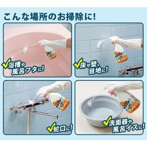 業務用スカッと浴室洗浄 浴室洗剤 水アカ 石けんカス 皮脂汚れ 弱アルカリ性|fuku-kitaru|13