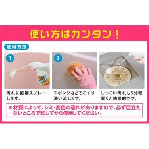 業務用スカッと浴室洗浄 浴室洗剤 水アカ 石けんカス 皮脂汚れ 弱アルカリ性|fuku-kitaru|05