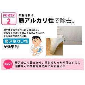 業務用スカッと浴室洗浄 浴室洗剤 水アカ 石けんカス 皮脂汚れ 弱アルカリ性|fuku-kitaru|10