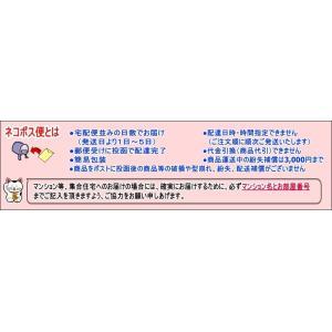マイクロファイバー履くモップ スリッパ ながら掃除 お掃除スリッパ 拭き 洗える|fuku-kitaru|03