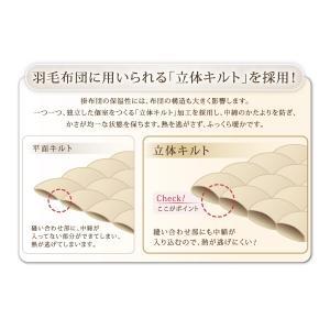 9色から選べる! 洗える抗菌防臭 シンサレート高機能中綿素材入り布団 8点セット ベッドタイプ シングル 来客用 暖かい 組布団/代引き決済不可/40201784|fuku-kitaru|12