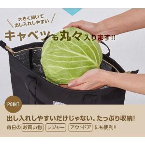保冷リュック 2way ファスナー式 アウトドア 買い物 手提げ 保冷バッグ リュックサック エコバッグ おしゃれ 大容量 ペットボトル|fuku-kitaru|04