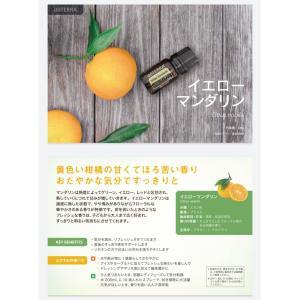 ドテラ イエローマンダリン 5ml|fukubookstore