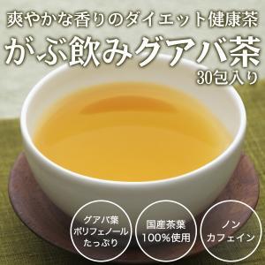 グアバ茶 グァバ茶 ノンカフェイン 国産 茶 健康茶 送料無...
