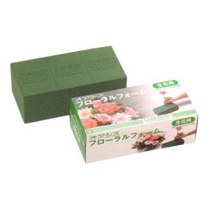 オアシス スタンダード 1個(化粧箱入り)|fukuchan-hanazakka