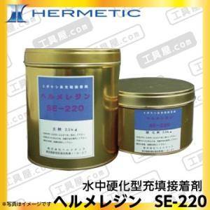ヘルメチック ヘルメレジン SE-220 (水中硬化型充填接着剤) 3kgセット