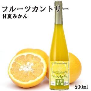 ジュース 甘夏 100% ストレート 1本500ml 九州 熊本|fukuda-farm