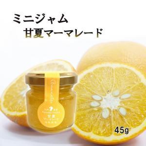 マーマレード 甘夏 ミニ 45g お試し 使い切りサイズ 福田農場 熊本|fukuda-farm