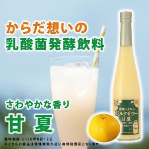 農場の乳酸菌飲料 ミルクサワー甘夏 5倍希釈 500ml|fukuda-farm
