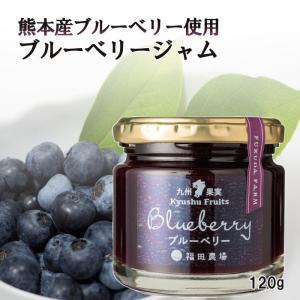 ジャム ブルーベリー 215g レギュラーサイズ 福田農場 熊本|fukuda-farm