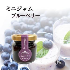 ジャム ブルーベリー ミニ 45g お試し 使い切りサイズ 福田農場 熊本|fukuda-farm