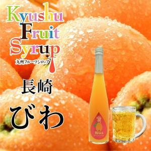 ノンアルコール ノンアルドリンク 九州果実シロップ びわ 3倍希釈 はちみつ入り 500ml|fukuda-farm