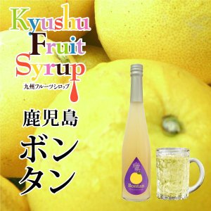 ノンアルコール ノンアルドリンク 九州果実シロップ ボンタン 3倍希釈  はちみつ入り 500ml|fukuda-farm