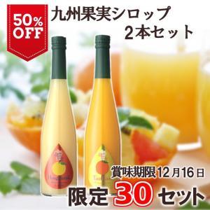 訳あり ノンアルコール ノンアルドリンク 九州果実シロップ ネット限定5本セット ギフト不可|fukuda-farm