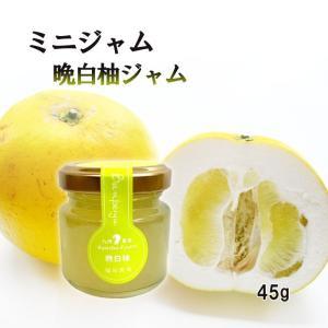 ジャム 晩白柚 ミニ 45g お試し 使い切りサイズ 福田農場 熊本 ばんぺいゆ|fukuda-farm